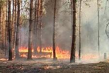 В Удмуртии объявили начало пожароопасного сезона