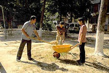 Итоги конкурса по санитарной очистке подвели в республике