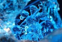 В Ижевске стартует фестиваль ледяных скульптур