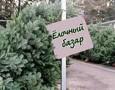 Скоро в Ижевске начнут открываться елочные базары