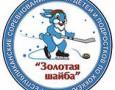 На всероссийском турнире «Золотая шайба» юные хоккеисты из Можги заняли второе м