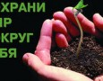 В общественном транспорте Ижевска появится экологическая реклама